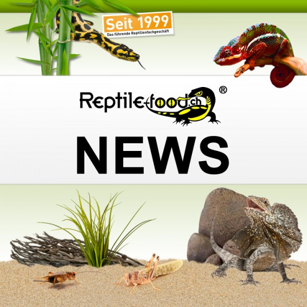 reptile-food-news