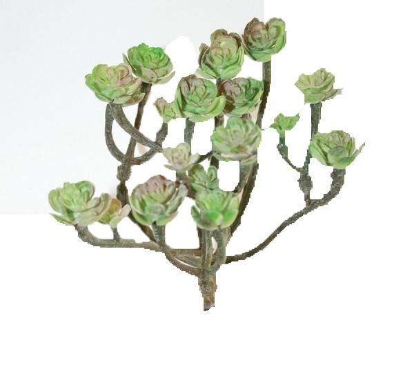 Cacta green ca. 15cm